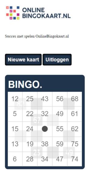 bingokaarten gemaakt in huisstijl