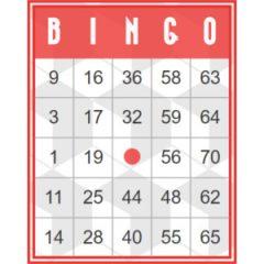 Rode retro bingokaart