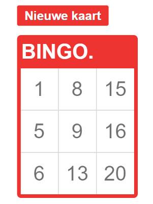 bingokaart tot en met 20